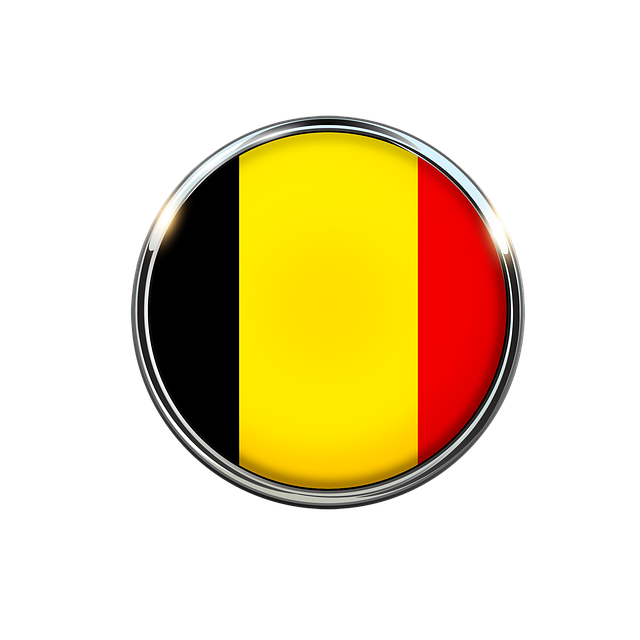 Badge belge